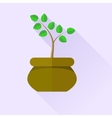 Green Plant vector image
