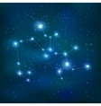 Sagittarius Realistic Constellation Zodiac Sign vector image