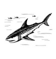 shark sketch freehand drawing vector image