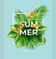 summer tropical background with strelitzia flowers vector image vector image