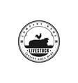 vintage retro angus cow bull cattle livestock farm vector image vector image