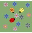 Ladybug and flower card vector image