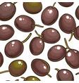 olive fruit pattern on white background vector image vector image