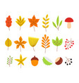 set colorful autumn leaves and berries vector image vector image