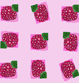 berry raspberry the pattern of schematically drawn vector image