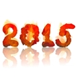 burning 2015 year vector image