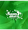 cool summer background vector image vector image