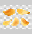 crispy chips made of potato slices icons vector image