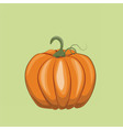 Fresh Pumpkin on green vector image vector image