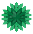 Green Wheel Flower isolated vector image vector image