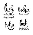 lashes lettering beauty salon lash maker vector image
