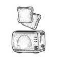 toasts fly up from toaster sketch vector image vector image