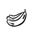 banana grunge icon vector image vector image