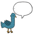 digitally drawn pigeon characters and speech vector image vector image