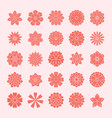 doodle flowers set pink red color beautiful vector image vector image