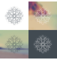 set ornament round mandalas vector image vector image