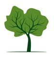shape tree with green leaves outline plant vector image vector image