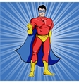 Superman In Blue Mask vector image