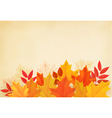 Abstract autumn background with colorful leaves