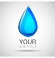 Blue Water drop abstract logo design vector image vector image