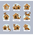 Cartoon dog in different poses to vector image vector image