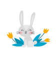 cute rabbit character for easter isolated on white vector image