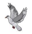 flying white dove on white background as symbol of vector image vector image