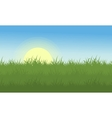 Landscape of grass at the morning vector image vector image