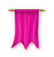 pink pennat flag competition element vector image