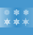 set of snowflake vector image