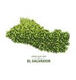green leaf map el salvador vector image vector image