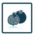 Icon of Pomegranate vector image vector image