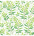tropical leaves pattern summer equatorial vector image