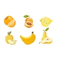 yellow fruits collection isolated over vector image vector image