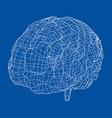 3d outline brain rendering of vector image