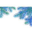christmas spruce border vector image vector image