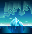 aurora borealis and iceberg vector image