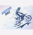 bike with triangle splints motocross stylized vector image vector image