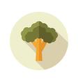 Broccoli flat icon Vegetable vector image vector image