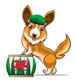 Corgi and Drum vector image vector image