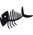 Curve Fish Skeleton vector image vector image