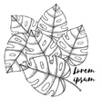 Engraved palm leaves vector image vector image