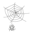 spider web and spider vector image