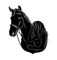 stylized silhouette a horse with a beautiful vector image