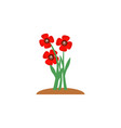 summer and spring blossom forest and garden red vector image vector image