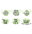 tea quotes hand drawn lettering vector image vector image