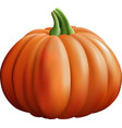 pumpkin isolated on white backgrou vector image
