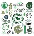 watercolor logotypes setbadges labelsgreen