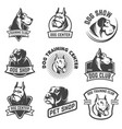 dog shop dog training center emblem templates vector image vector image