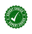 expert choice grunge stamp with tick vector image vector image